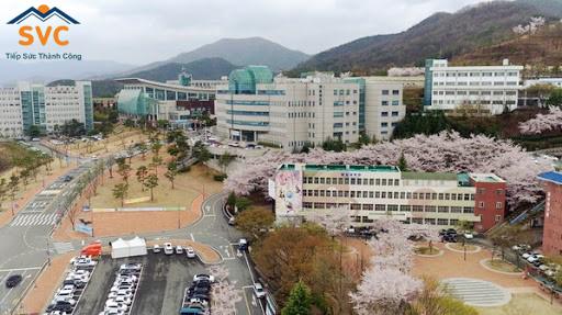 Khuôn viên đại học Daegu Haany